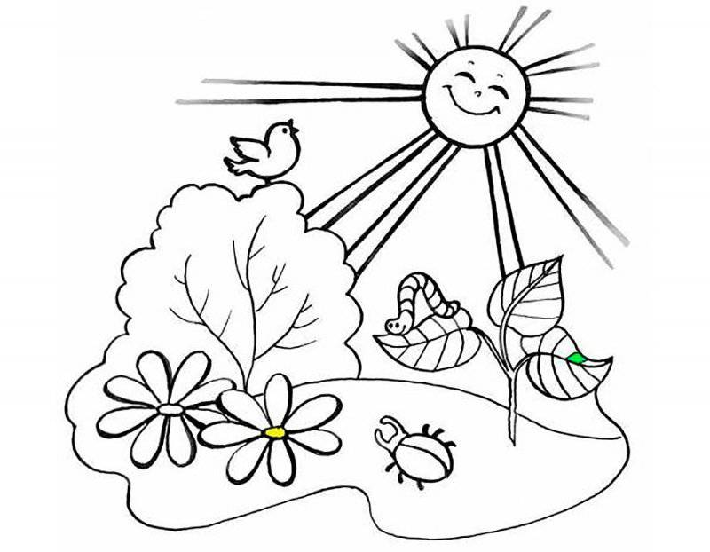 Desene Cu Vara De Colorat Planșe și Imagini De Colorat Cu Vara