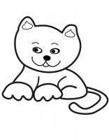 Desene cu pisici de colorat, planșe și imagini de colorat cu pisici