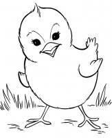 Desene De Colorat Cu Animale Imprimă Planșe și Imagini De