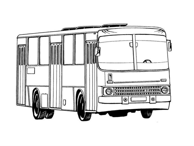 Desene Cu Autobuze De Colorat Imagini și Planșe De Colorat