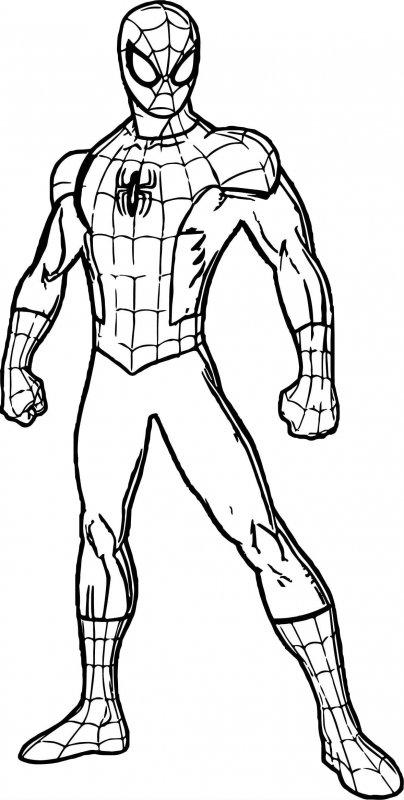 Desene Cu Spiderman De Colorat Imagini și Planșe De Colorat