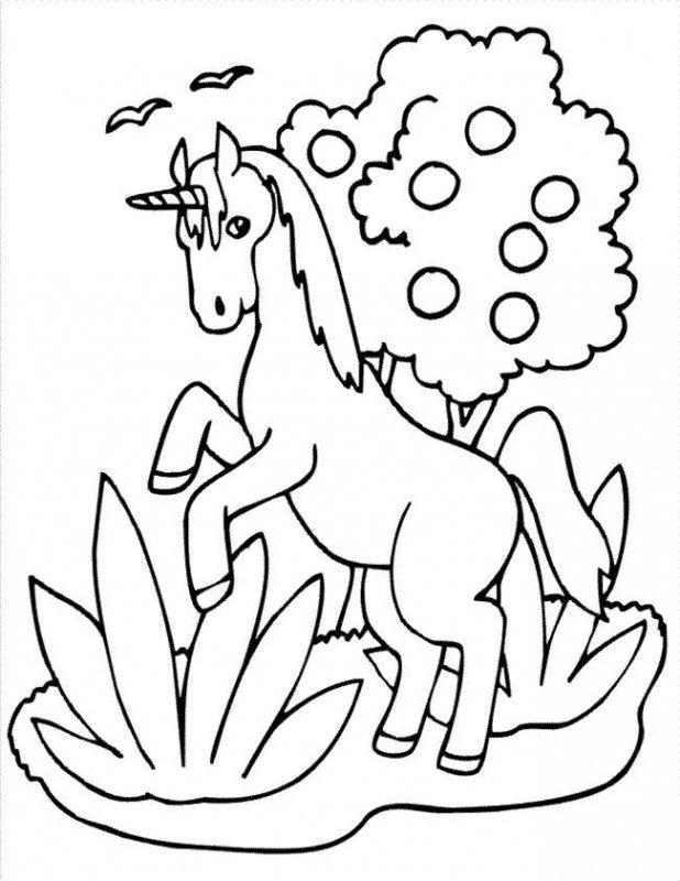 Desene Cu Unicorni De Colorat Imagini și Planșe De Colorat
