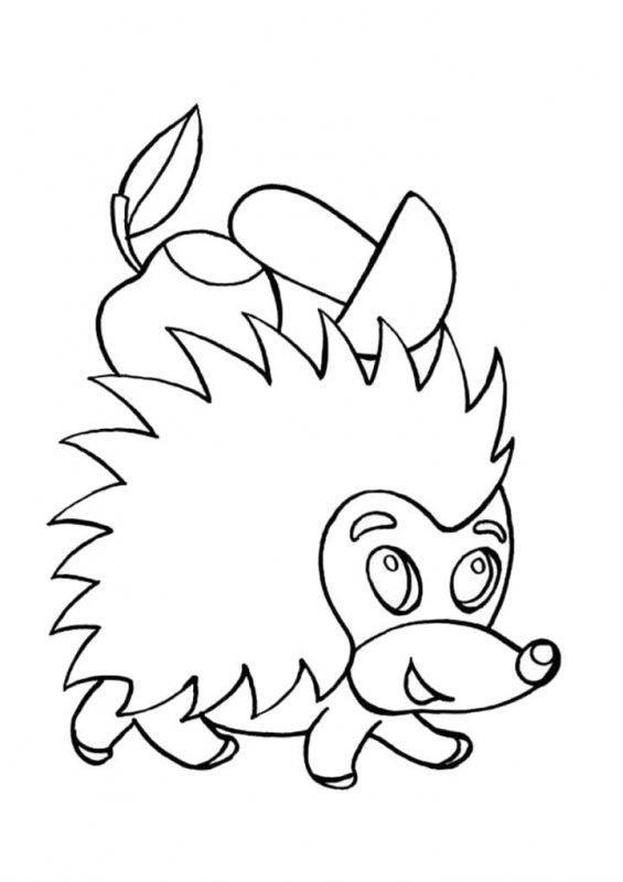 Desene Cu Arici De Colorat Imagini și Planșe De Colorat Cu