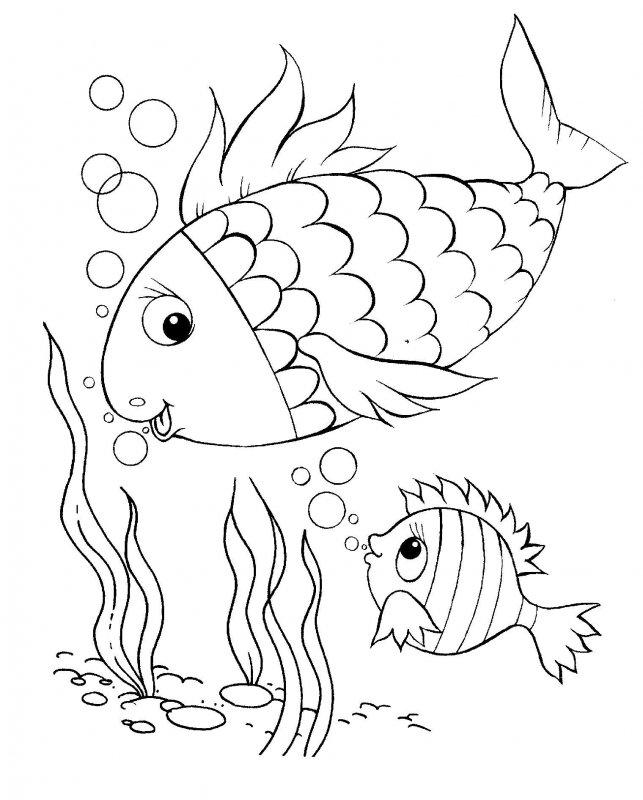 Desene Cu Pesti De Colorat Imagini și Planșe De Colorat Cu