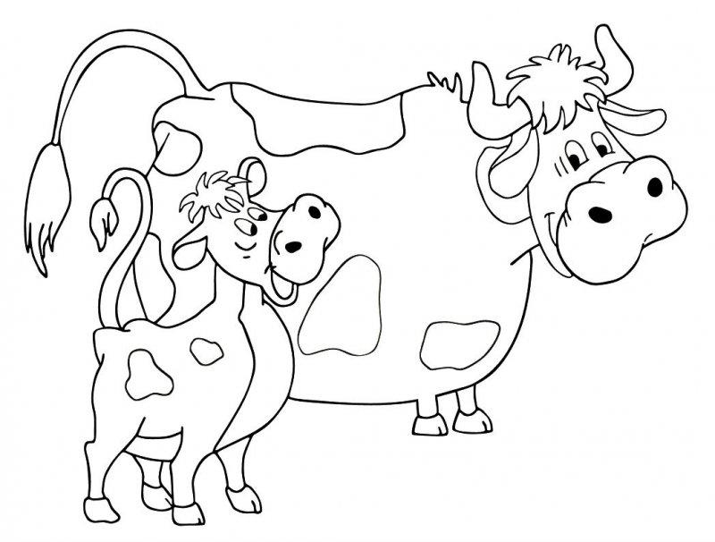Desene Colorat Cu Animale Domestice Idea Gallery