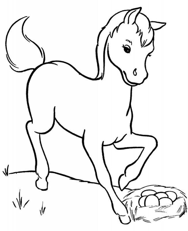 Imagini De Colorat Animale Domestice Idea Gallery