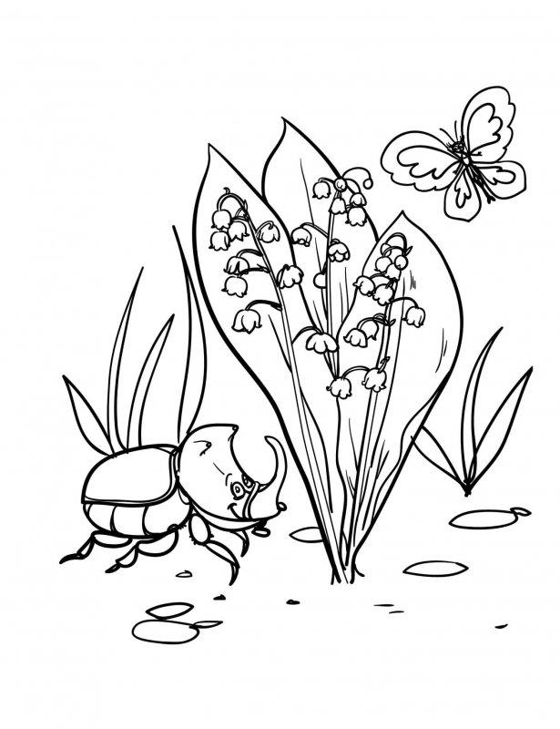 Desene Cu Ghiocei De Colorat Imagini și Planșe De Colorat