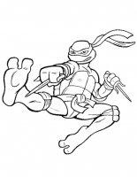 Testoasele Ninja
