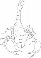 Scorpioni