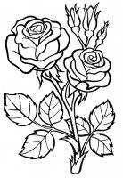 Desene cu Trandafiri de colorat, imagini și planșe de colorat cu trandafiri
