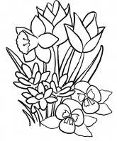 Desene cu Flori de Primavara de colorat, imagini și planșe de colorat cu flori de primavara