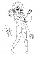 Lady Bug And Super Cat