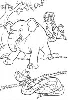 Desene cu Animale din Jungla de colorat, imagini și planșe de colorat cu Animale din jungla